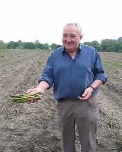 British Asparagus Festival